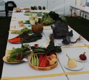 Lyme Valley Vegetable Show
