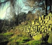 Behind Cratcliffe Tor