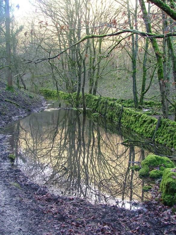 Ravensdale Flooded